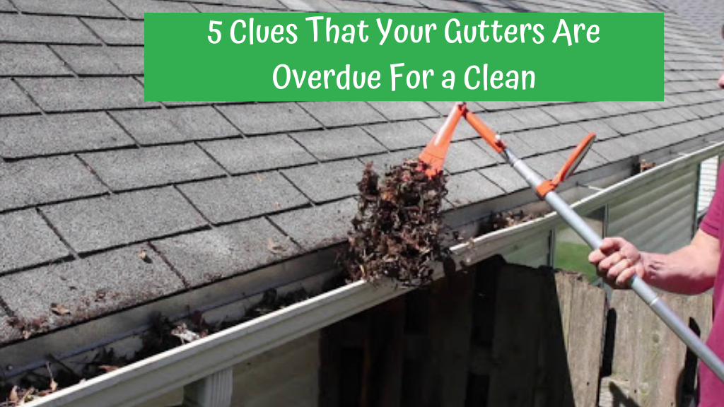 5-clues-that-your-gutters-are-overdue-for-a-clean